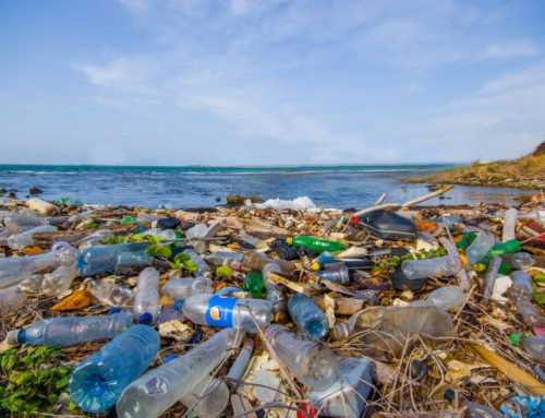 Drowning in Plastic – Impact Recycling